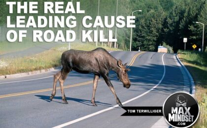 Tom Terwilliger | Max Mindset | High Achievers University | The Leading Cause of Road Kill